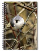 Tufted Titmouse On The Watch Spiral Notebook
