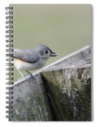 Tufted Titmouse With Seed Spiral Notebook