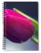 Tulip 2a Spiral Notebook