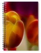 Tulip-7016-fractal Spiral Notebook