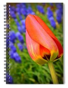 Tulip And Muscari  Spiral Notebook