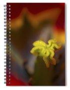 Tulip Center Spiral Notebook