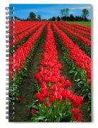 Tulip Cornucopia Spiral Notebook