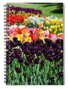 Tulip Field 1 Spiral Notebook