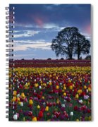 Tulip Field's Last Colors Spiral Notebook