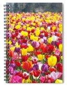 Tulip Flower Festival Art Prints Spring Spiral Notebook