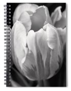 Tulip Flowers Black And White Spiral Notebook
