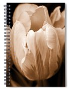 Tulip Flowers Sepia Monochrome Spiral Notebook