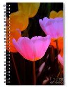 Tulip Glow Spiral Notebook