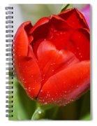 Tulip Heart Spiral Notebook
