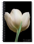 Tulip #2 Spiral Notebook
