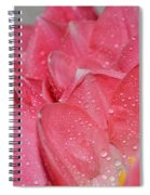 Tulip Lacery Spiral Notebook