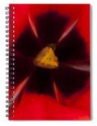 Tulip Macro 1 Spiral Notebook