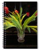 Tulip Mania 18 Spiral Notebook