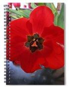 Tulip Mania 20 Spiral Notebook