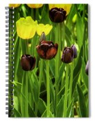 Tulip Race Time Spiral Notebook
