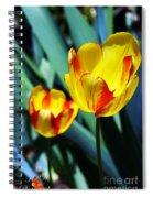 Tulip Sun Burst Spiral Notebook
