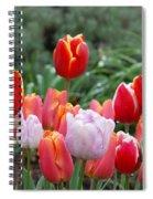Tulip Tango Spiral Notebook