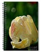 Tulip Teardrops  Spiral Notebook