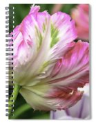 Tulip Time Pink And White Spiral Notebook