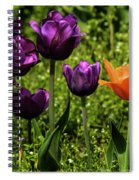 Tulip Time Purple And Orange Spiral Notebook