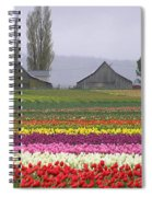 Tulip Town Barns Spiral Notebook