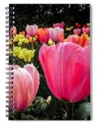 Tulip Trail Spiral Notebook