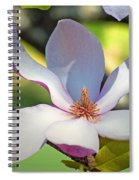 Tulip Tree Bloom Spiral Notebook