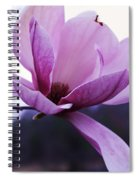 Tulip Tree Blooming Spiral Notebook