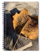 Tulip Tree Leaf - Frozen Raindrops In The Sunshine Spiral Notebook