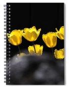 Tulips 6077 Spiral Notebook