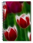 Tulips-6823-fractal Spiral Notebook