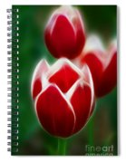 Tulips-6835-fractal Spiral Notebook