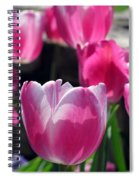 Tulips - Affectionately Yours 02 Spiral Notebook