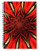 Tulips And Daffodils Under Star Glass Spiral Notebook