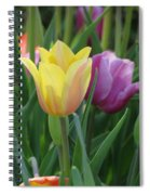Tulips - Caring Thoughts 03 Spiral Notebook