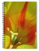 Tulips - Cheerful Energy 06 Spiral Notebook