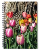 Tulips - Field With Love 07 Spiral Notebook