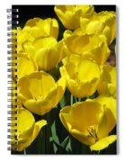 Tulips - Field With Love 17 Spiral Notebook