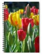 Tulips - Field With Love 22 Spiral Notebook