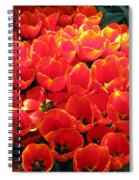 Tulips - Field With Love 28 Spiral Notebook