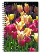 Tulips - Field With Love 35 Spiral Notebook