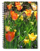 Tulips - Field With Love 41 Spiral Notebook