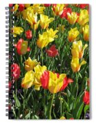 Tulips - Field With Love 49 Spiral Notebook
