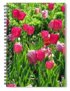 Tulips - Field With Love 54 Spiral Notebook