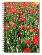 Tulips - Field With Love 61 Spiral Notebook
