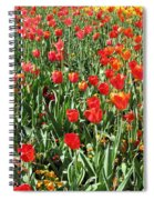 Tulips - Field With Love 62 Spiral Notebook