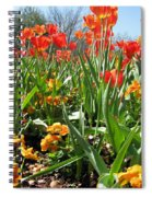 Tulips - Field With Love 64 Spiral Notebook