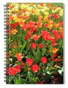 Tulips - Field With Love 68 Spiral Notebook