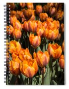 Tulips Galore  Spiral Notebook